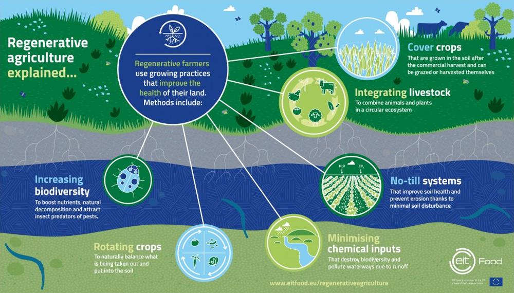 Blog-EIT_Food-Regenerative_Agriculture-Infographic_1